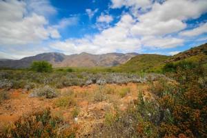 Klein Karoo Mountains